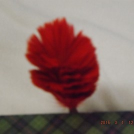 Bonnet Hackle